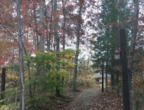 Hiking Trails & Prayer Walks