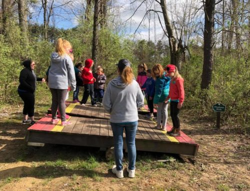 Low Ropes Challenge Course